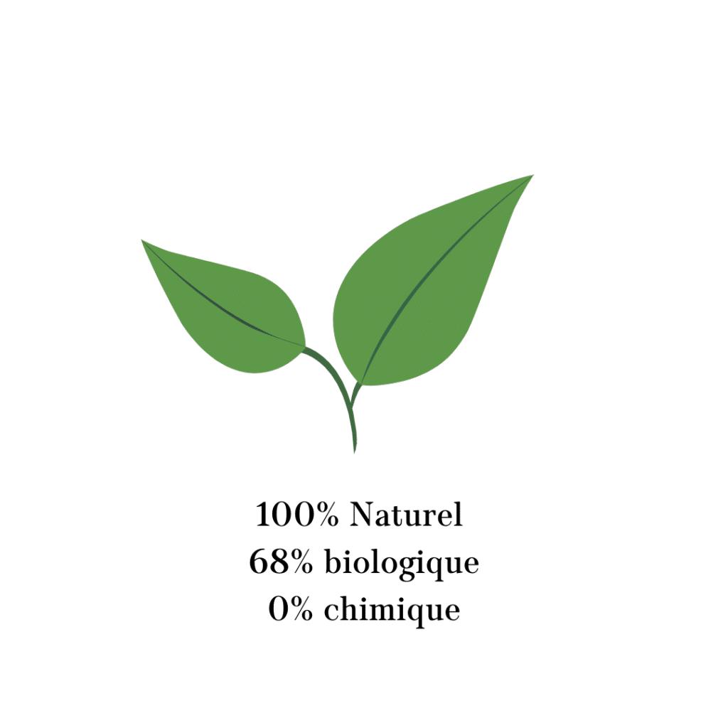 100% naturel, Loesia, maquillage biologique et naturel, Premier Rouge à lèvres français naturel et hydratant
