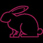 icone lapin